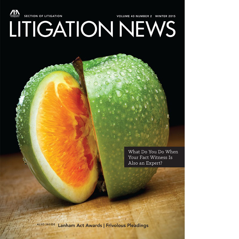 Litigation News - Winter 2015